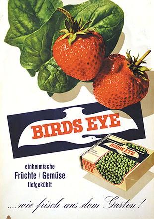Annen E. - Birds Eye