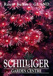 Anonym - Schilliger