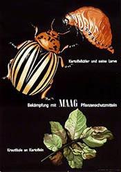 Maag Lotti - Maag Pflanzenschutzmittel