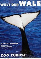 Gruber Erich - Welt der Wale