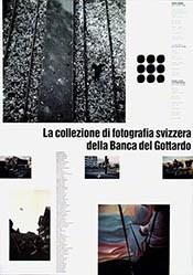Bianda / Bellacchini - La Collezione di fotografia