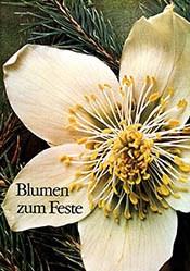 Braunig A.& N. - Blumen zum Feste