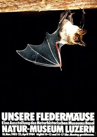 Gebhard J. - Unsere Fledermäuse