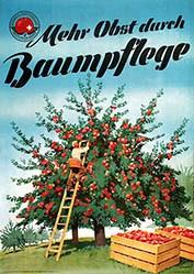 Ernst Otto - Mehr Obst durch Baumpflege