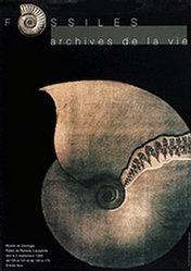 Ansermet S. (Photo) - Fossiles