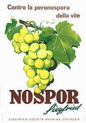 Anonym - Nospor