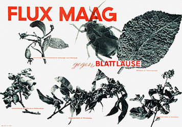 Anonym - Maag - Flux