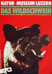 Steinemann Tino - Das Wildschwein