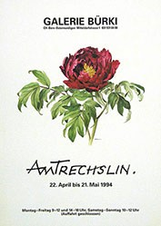 Anonym - Amtrechslin