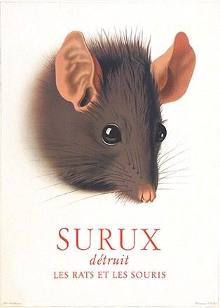 Birkhäuser Peter - Surux